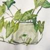 plantas-oberrohabch-tres